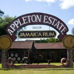 Appleton Estate Search for a New UK Brand Ambassador