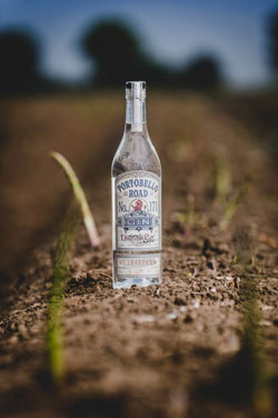 BarLifeUK News - Portobello Road Gin Launch Director's Cut Asparagus Limited Edition